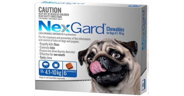 Nexgard Blue Small Dog Dogs Amp Puppies