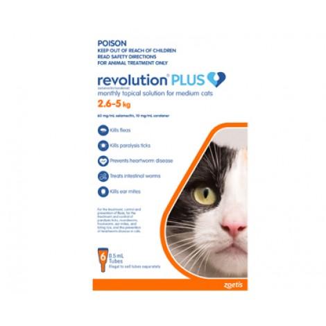 Revolution Plus Medium Cat Orange