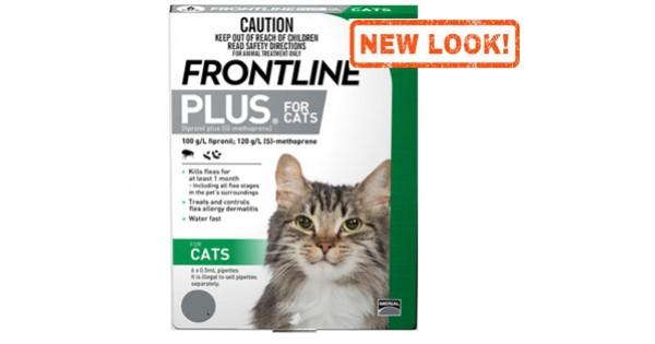 Frontline Plus Cat Cats Amp Kittens