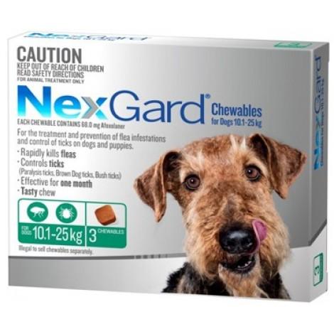 Nexgard Green Medium Dog