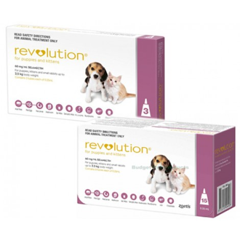 Revolution (Pink) For Puppies & Kittens